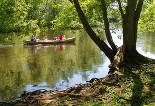 Concord_River_with_canoes,_July_2005