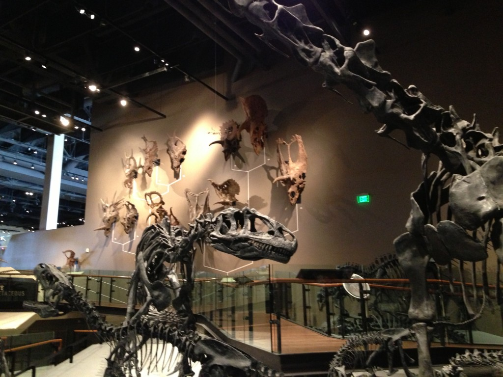 Natural History Museum at Rio Tinto Center