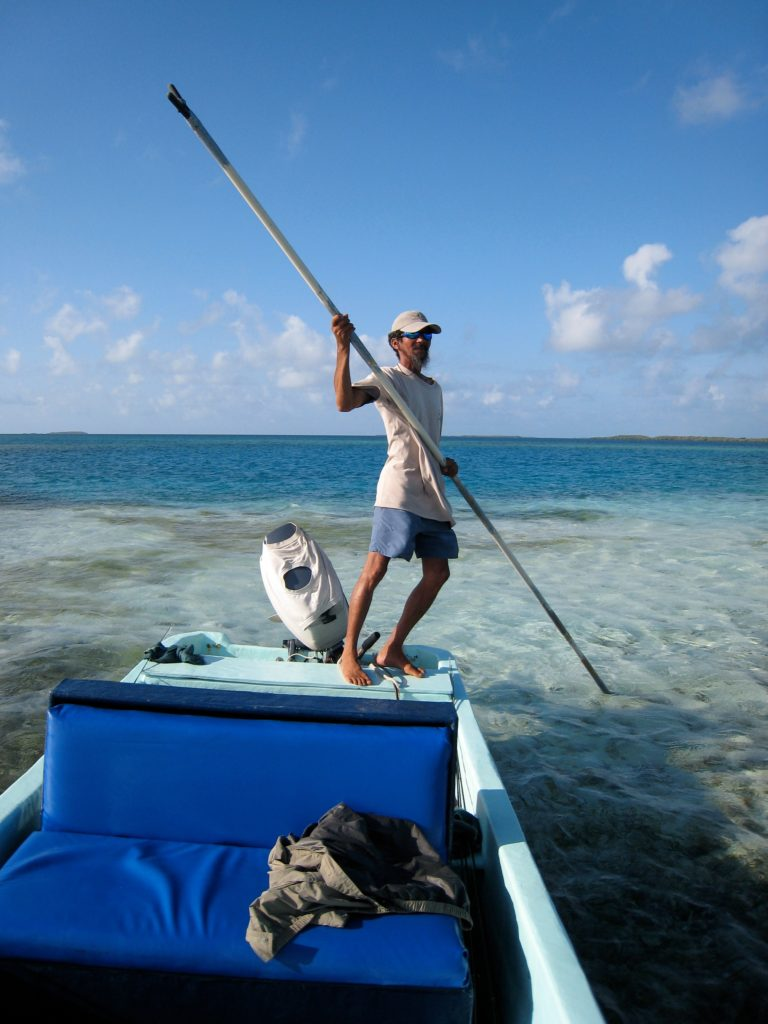 Mambo, leading the hunt for tarpon in Belize