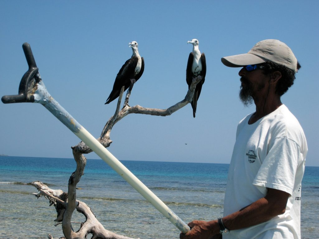 Mambo and the birds, Belize