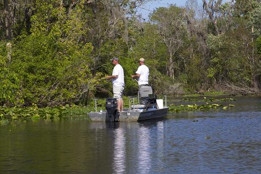 The backwaters of the St. Johns River bordering Lake Woodruff National Wildlife Reserve are some of the most productive fishing waters in Florida and consistently produce bumper catches of largemouth bass, crappie and panfish. The region is located near Deland, FL.