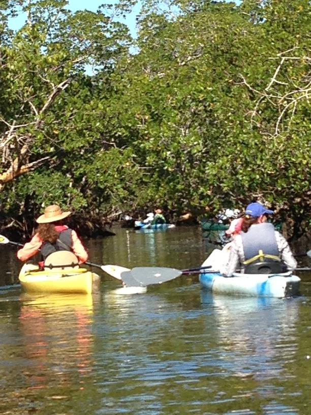 Paddling with Betsy Clayton in the J. Ding Darling Refuge