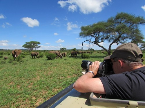 The only way to shoot elephants in Tarangire National park in Tanzania