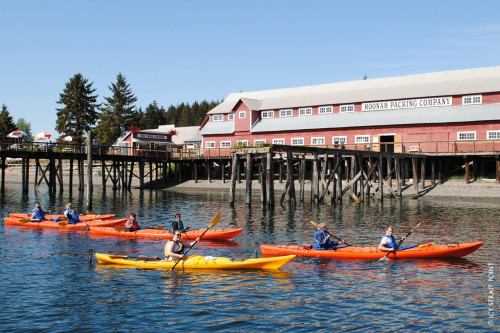 Kayaking in Icy Strait Point, Alaska
