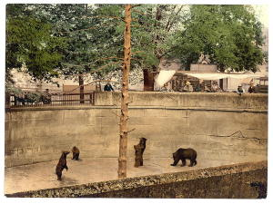 BearPit in Bern, circa 1900