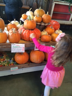 Press your own cider and browse the local produce at Sunshine Market. By Julie Snyder