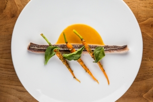 Needlefish with carrots at Padaste Manor.