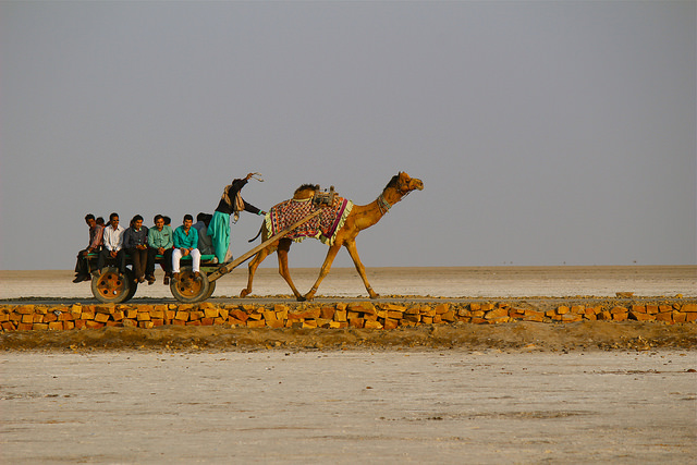 Traveling in Gurjarat, India with Immersion Journeys