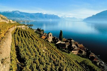 The Lavaux, a UNESCO World heritage Site, in the Lake Geneva Region of Switzerland