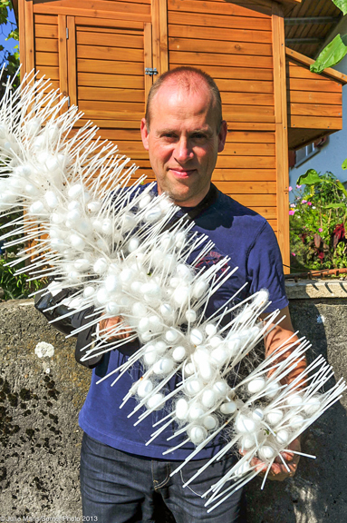 Silk farmer Ueli Ramseier and cocoons