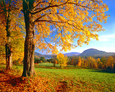 USA, Vermont, West Barnet, Harvey's Lake, autumn   Original Filename: 200444257-001.jpg