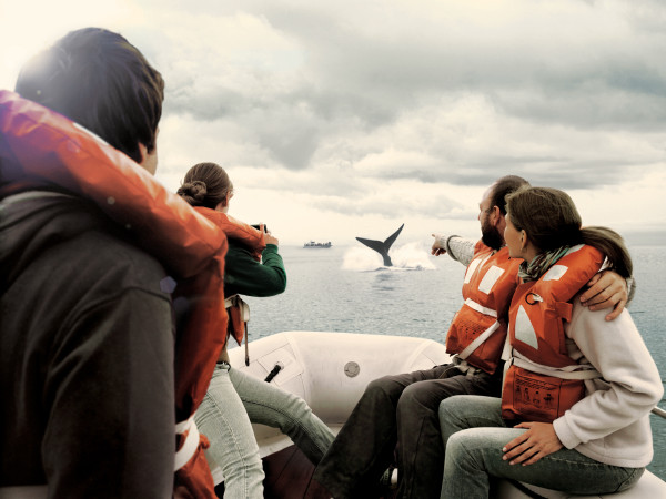 Whale watching in Patagonia with Say Hueque