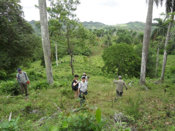 Impact groups hike to degraded mountain sites where stakes mark the places for planting seedlings.