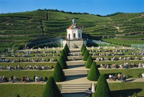In Schloss Wackerbarth's terraced vineyards, visitors sample fine wines. PHOTO Dietmar Scherf COURTESY Germany National Tourist Board (GNTB)