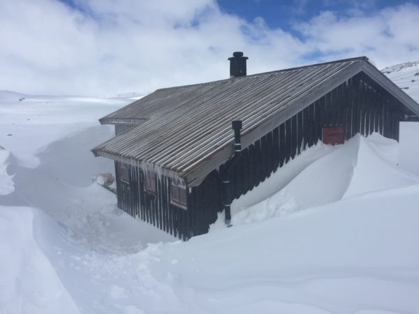 Our Finse hytte for a week in mid-April
